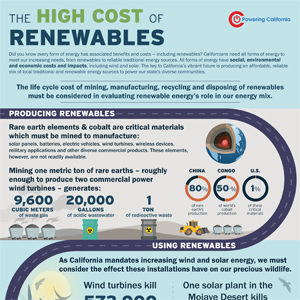 The High Cost of Renewables